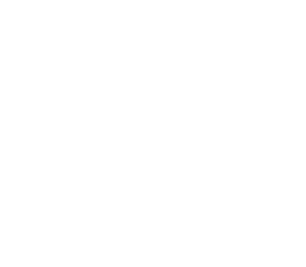 Community Healing Network